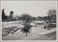 [Lower part of Arroyo Seco, Hermon Avenue]