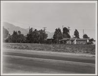 [Loose settlement on Mountain View Street, Altadena]