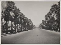 [4th Street, looking north, Santa Monica]