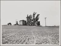 [Farm on Robertson Boulevard north of Hall Road; studio farm]