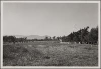 Looking north from Corona del Mar and Altata Drive, Huntington Palisades