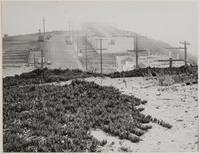 Quintara Street and 12 Avenue, San Francisco