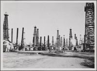 Signal Hill oil field