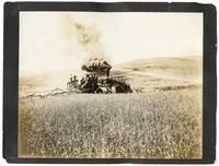 Agricultural laborers harvesting wheat in California