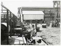 Agricultural workers processing hops crops