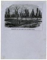 Georgetown and Pilot Creek Canal, El Dorado County.