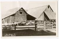 The barns at Scott's Ranch