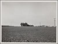 Wilmington farmstead north of S Street and Lagoon Avenue