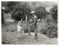 Man and child examining an undesirable orange tree