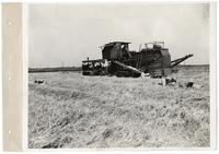 Agricultural machinery in a field