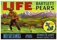 Life Brand Bartlett pears, Dennis W. Leary, Walnut Grove