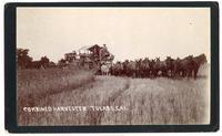 Combined harvester Tulare, California