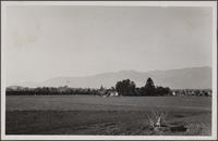 In foreground an estate, an orchard until recently, now leased for cultivation; in background the orchard of Mr. Jade Graves, in left background, the still-intact Huntington Hotel