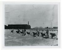 Union Pacific Salt Works, Alvarado, Alameda County