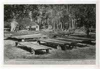 Drying fruit at Mr. Clough's, Alameda County, August 1885