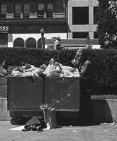 Homeless man eats from trash bin in Union Square