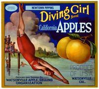 Diving Girl Brand California apples, Watsonville Apple Selling Organization