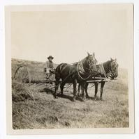 Agricultural worker in a horse-drawn apparatus