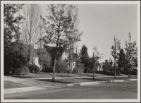 Looking south on Crescent Drive from south of Brighton Way, Beverly Hills