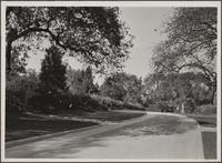 Oak Knoll, private residential ground, 1201 Arden Road, Pasadena
