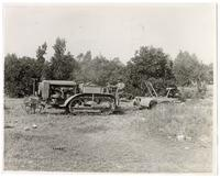 Agricultural worker operating a tractor in an orange orchard