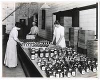 Women labeling glass jars of olives, California
