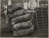 Sacks of potatoes, Clark and Front Streets, San Francisco