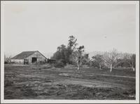 Gilmore Ranch barn