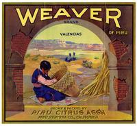 Weaver of Piru Brand valencias, Piru Citrus Ass'n