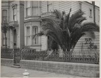 25th and Folsom Streets, San Francisco