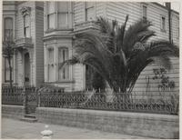 25th and Folsom Streets, San Francisco