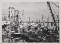 Terminal Island fish harbor