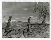 Rock wall on ranchlands