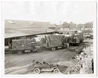 A scene at one of the grape shipping sheds near Lodi, San Joaquin County, circa 1925