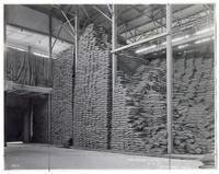 Raw Sugar W.H. No 1 Sec Pile 64 High, May 4 1921