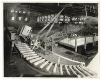 Boxes of oranges are unloaded on roller carriers at the packing house