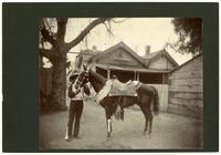 Mexican American caballero with the horse 'Puente,' La Fiesta, Los Angeles