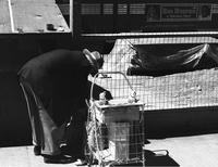 Man selling small toys on Market Street