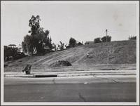 Looking west, Union Place and Crown Hill Avenue, cutting hay, wild oats and weeds