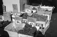Fruit display with prices, Chinatown