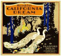 Sunkist California Dream Brand oranges, Bradford Bros. Inc., Placentia