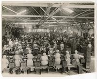 Women and men at work in one of the largest fruit canneries, San Jose, Santa Clara County, California