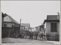 Slums on Hewitt Street