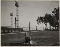 Bryant Park, San Francisco