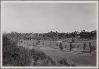 Golf course in Santa Monica Canyon