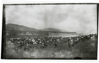 Rodeo at Rancho Santa Anita