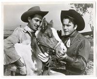 Cowboys  examining a donkey