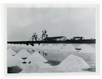 Crystal Salt Works, Newark, Alameda County