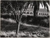 Stanford University, administration building in back, Santa Clara County, California