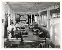Workers bottling olive oil, California